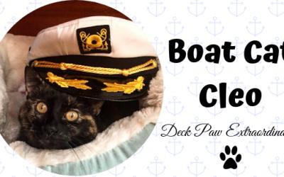 Boat Cat Cleo